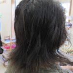 根気よく、頭皮と髪を育てる