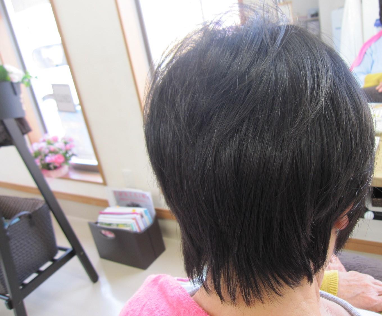 うす毛が・・うす毛じゃなくなった~これってカットなの?