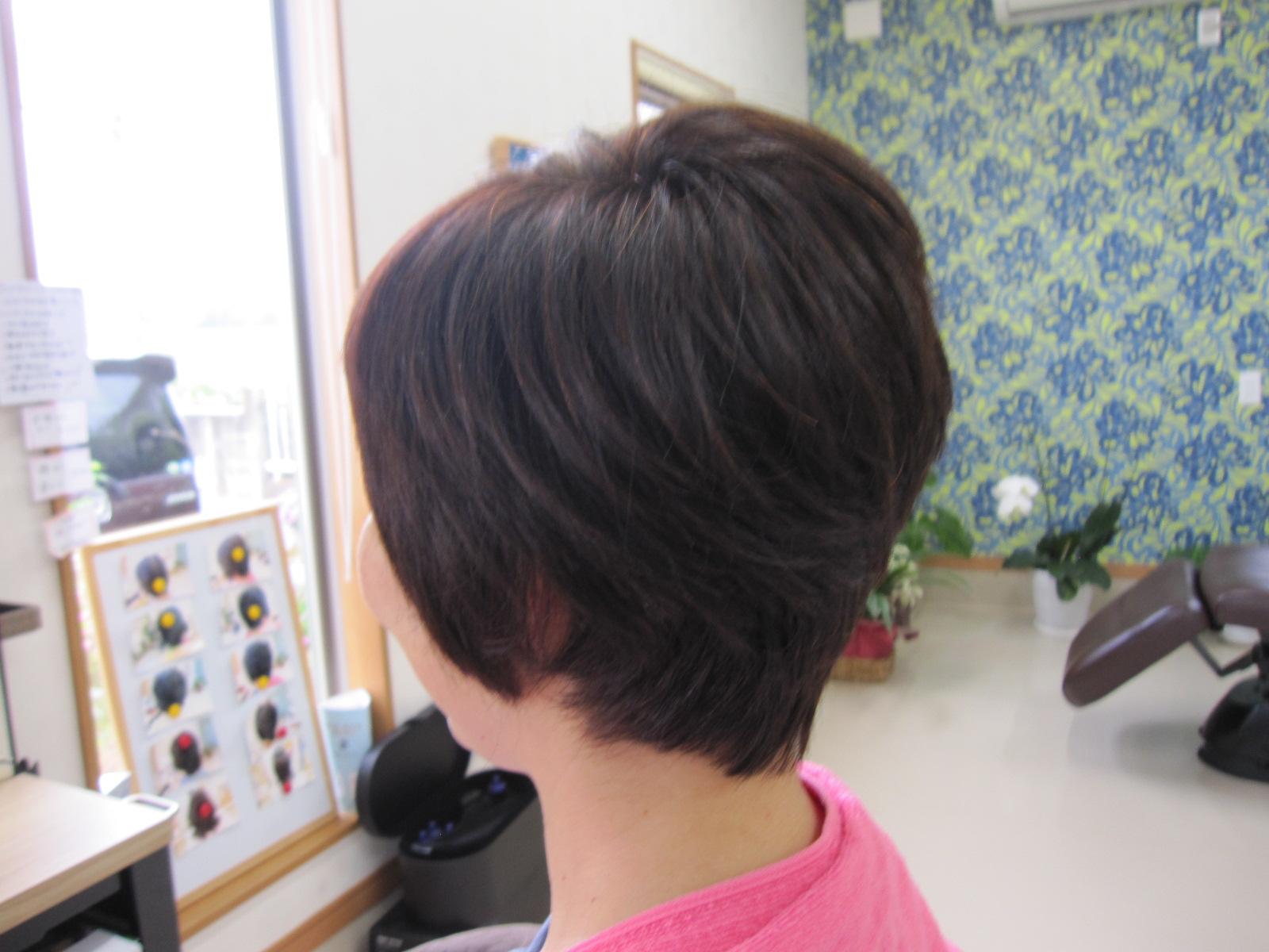 初めてのご来店で髪をバッサリ切りました~
