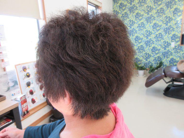 縮毛の髪が変化してきてる